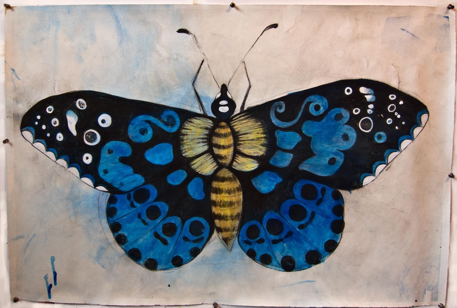 blue-butterfly-1