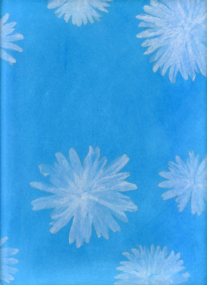 white-puffson-blue-bckgrd