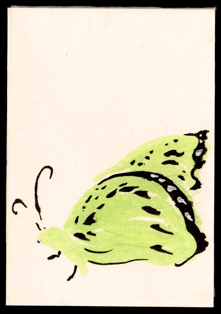 green-butterfly-1