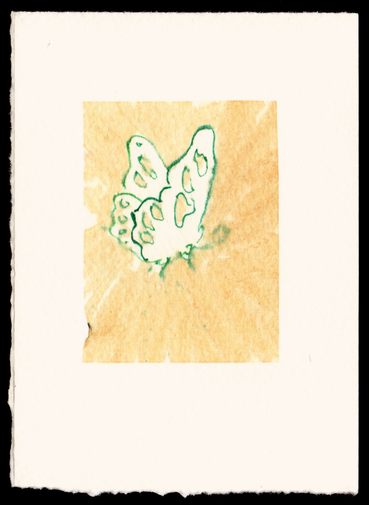 green-outline-butterfly-one