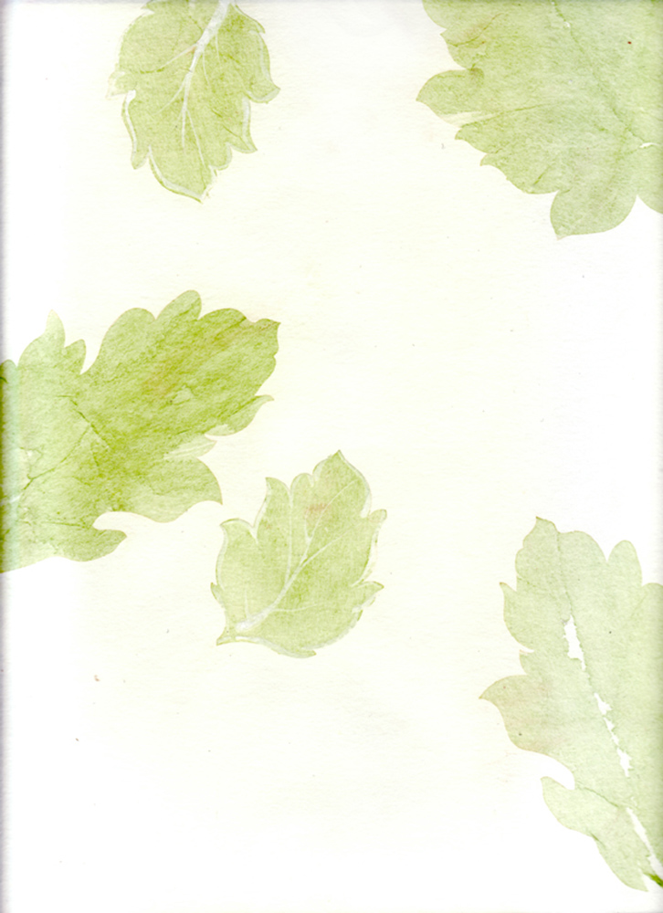 green-leaves-on-paper